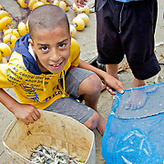 Small boys like this one are already fishermen in Borg-Meghezil, as their work brings much needed income.