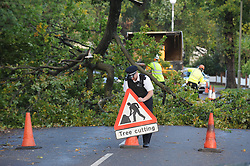 © Licensed to London News Pictures. 28/10/2013<br /> Storm Damage today (28.10.2013)<br /> Malcolm Grover from Biggin Hill,Kent was driving his car under this tree on Chilshurst Road, Orpington at 6.30AM this morning, He is very lucky to be alive.  (photographer has his mobile number)<br /> A Tree across Chislehurst Road,Orpington,Greater London<br /> due to storm St Jude.<br /> Photo credit :Grant Falvey/LNP