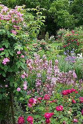 View over the Rose Garden at Sissinghurst Castle