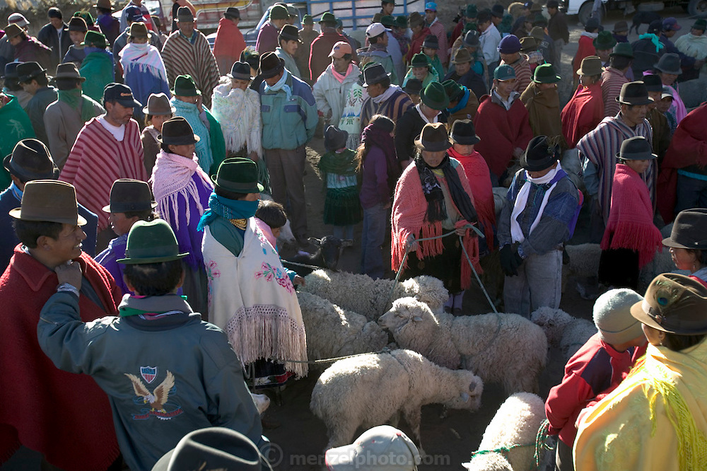 Weekly market in the indigenous community of Zumbagua, Ecuador. (Supporting image from the project Hungry Planet: What the World Eats.)