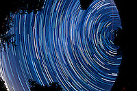 North View Star Trails. Summer Night in New Jersey. Image taken with a Nikon D3s and 16 mm f/2.8 mm Fisheye lens (ISO 400, 16 mm, f/4, 59 sec). Composite of 120 images combined using the Startrails program.