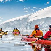 Kayakers in calm waters at Neko Harbour, Antarctica.