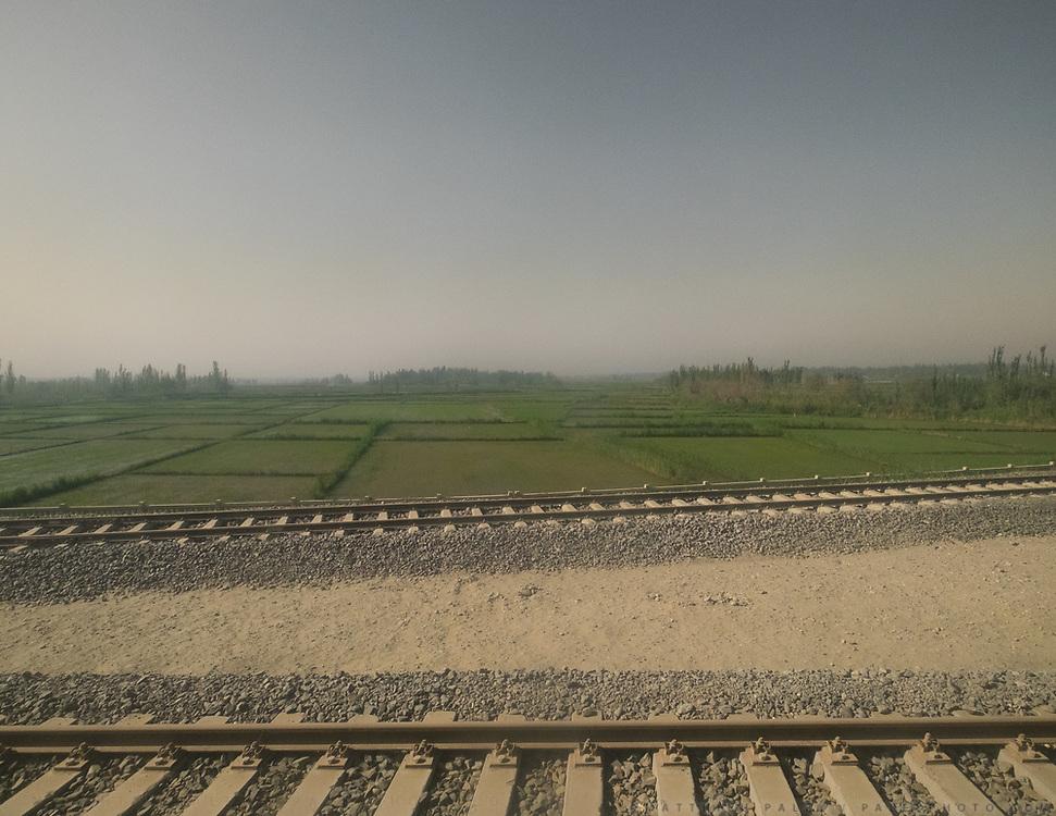 Oasis landscape between Hotan and Yarkand.