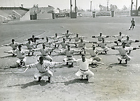 1944 Hollywood Stars Baseball Team warming up on Gilmore Field