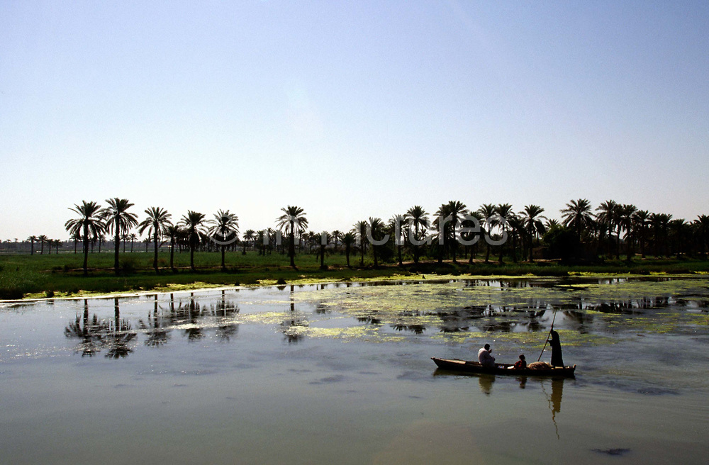 A Marsh Arab family return home in their boat near Basra. The marshes had been largely drained by the Saddam regime in order to bring their unruly and very traditional population to heel. The draining has decimated a way of life unchained since the dawn of civilisation