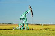 Oil pump jack and oats<br /> Carlyle<br /> Saskatchewan<br /> Canada