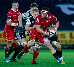 Will Boyde of Scarlets under pressure from Aled Davies of Ospreys<br /> <br /> Photographer Simon King/Replay Images<br /> <br /> Guinness PRO14 Round 11 - Ospreys v Scarlets - Saturday 22nd December 2018 - Liberty Stadium - Swansea<br /> <br /> World Copyright © Replay Images . All rights reserved. info@replayimages.co.uk - http://replayimages.co.uk