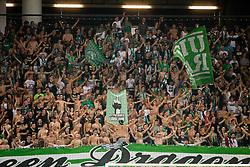Green Dragons during football match between NK Olimpija Ljubljana and NK Maribor in 7th Round of Prva liga Telekom Slovenije 2017/18, on August 27, 2017 in SRC Stozice, Ljubljana. Photo by Ziga Zupan / Sportida