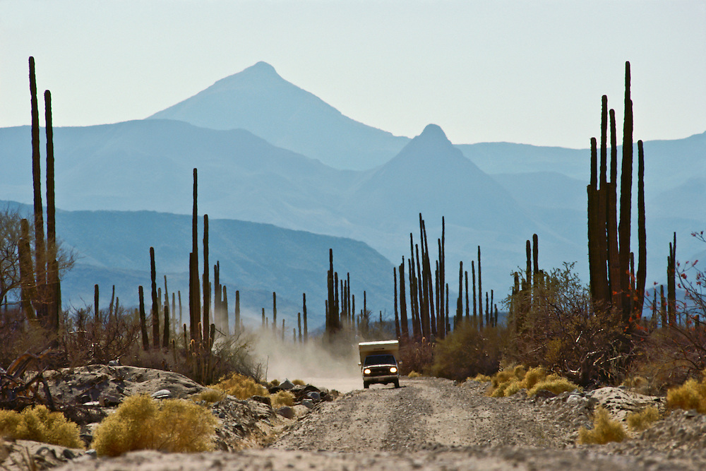 A truck leaves a trail of dust while driving through the desert of Baja California.