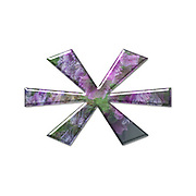 The Asterisk symbol. Part of a set of letters, Numbers and symbols of 3D Alphabet made with a floral image on white background