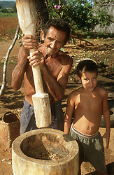 Farmer working on smallholding near Vinales; Cuba; grinding coffee beans using large wooden pestle and mortar,