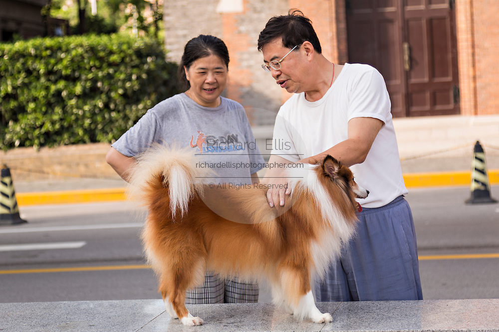 A man grooms his dog on the streets of Shanghai, China