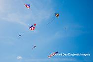 63495-02703 Kites flying at Flagler Beach Flagler Beach, FL