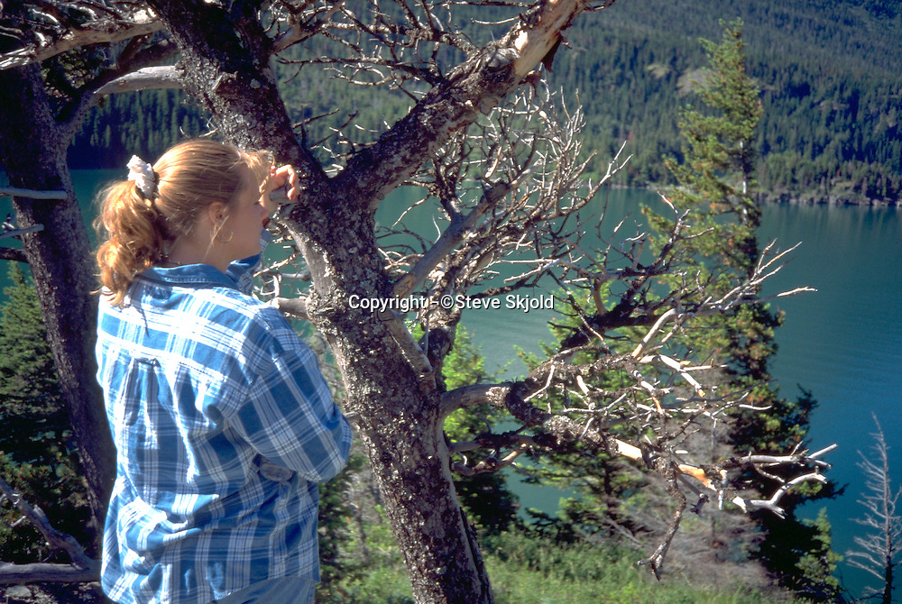 Woman age 24 on nature vacation.  Alberta Canada