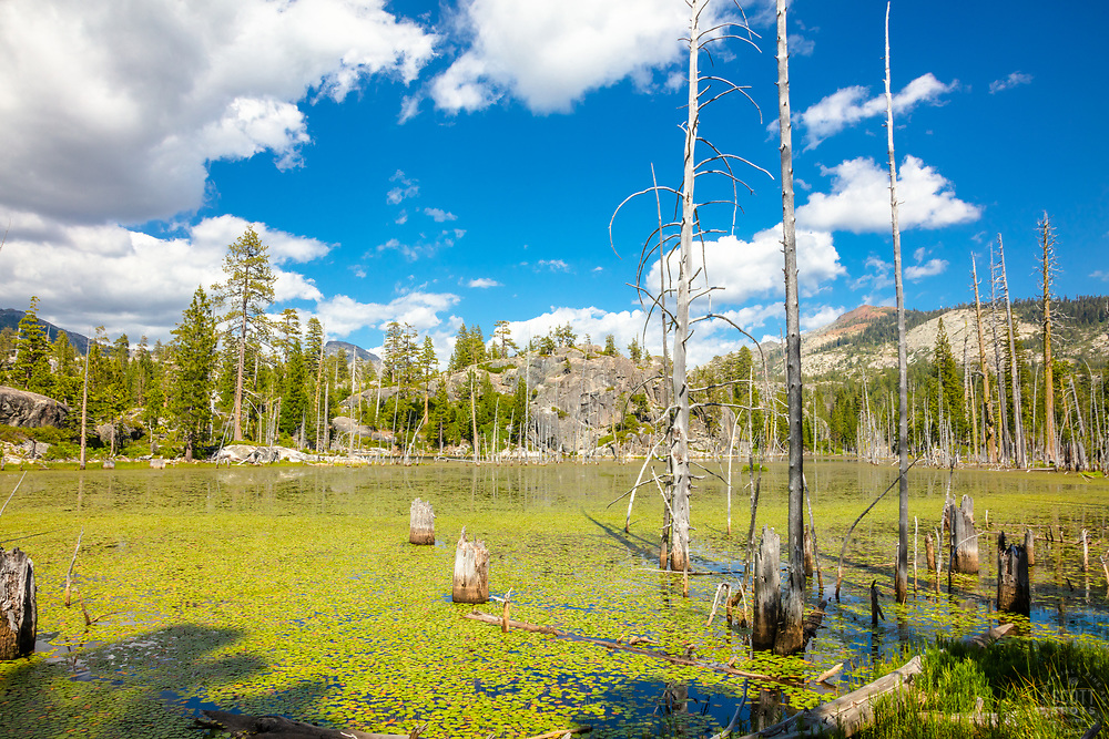 """""""Lake in the Tahoe Back Country 1"""" - Photograph of a small lake with no name in the Tahoe area back county, somewhat near Jackson Meadows."""