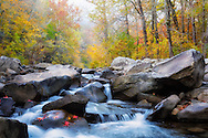 Early morning in late October on Richland Creek.
