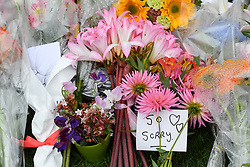 CHRISTCHURCH, March 17, 2019  Flowers are placed by people to mourn the victims of the attacks on two mosques in Christchurch, New Zealand, on March 17, 2019. The death toll from the terror attacks on two mosques in New Zealand's Christchurch has risen to 50 as one more victim was found at one of the shooting scenes, the police said on Sunday. (Credit Image: © Xinhua via ZUMA Wire)
