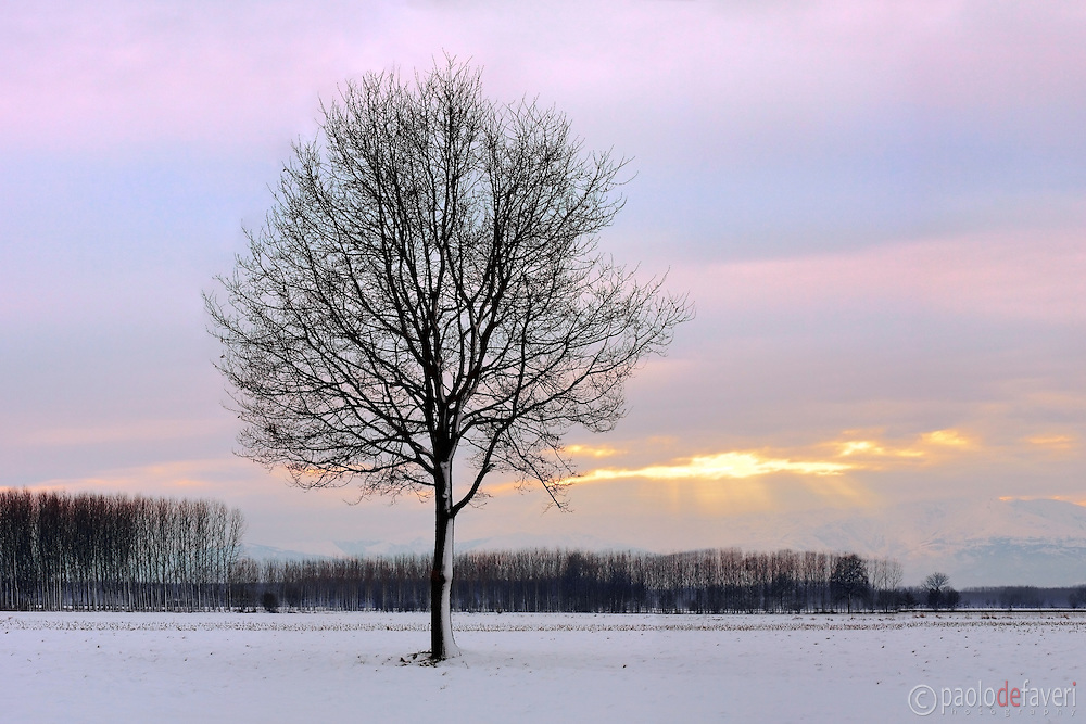 An utterly cold evening at the end of December in the fields around home. Fresh snow and sunset lights always combine well for some simple yet compelling landscape photography.