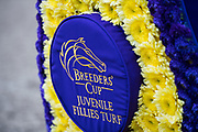 November 2, 2018: Newspaperofrecord #6, ridden by Irad Ortiz, Jr., wins the Juvenile Fillies Turf on Breeders' Cup World Championship Friday at Churchill Downs on November 2, 2018 in Louisville, Kentucky
