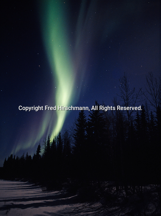 Northern lights above frozen stream and boreal forest northeast of Fairbanks, Chena River State Recreation Area, Alaska.