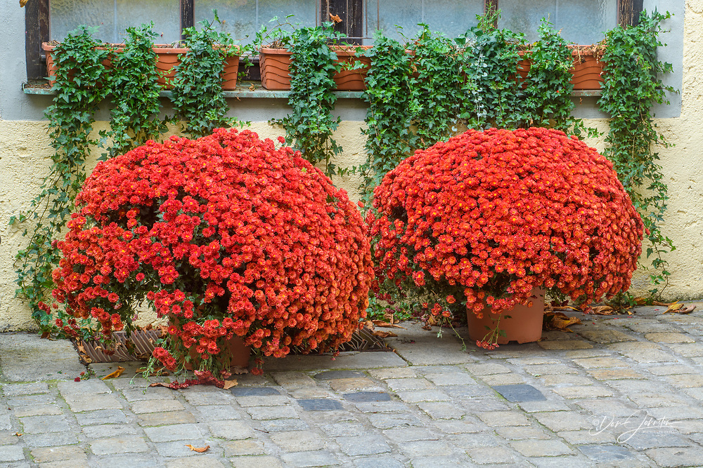Intimate street scenes in late autumn, Regensburg, Bavaria, Germany
