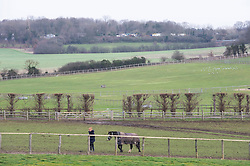© Licensed to London News Pictures 20/02/2021.        Swanley, UK. A horse being walked out to graze this morning in Swanley, Kent. Warmer temperatures are expected all weekend with today set to be the hottest in three months. Photo credit:Grant Falvey/LNP
