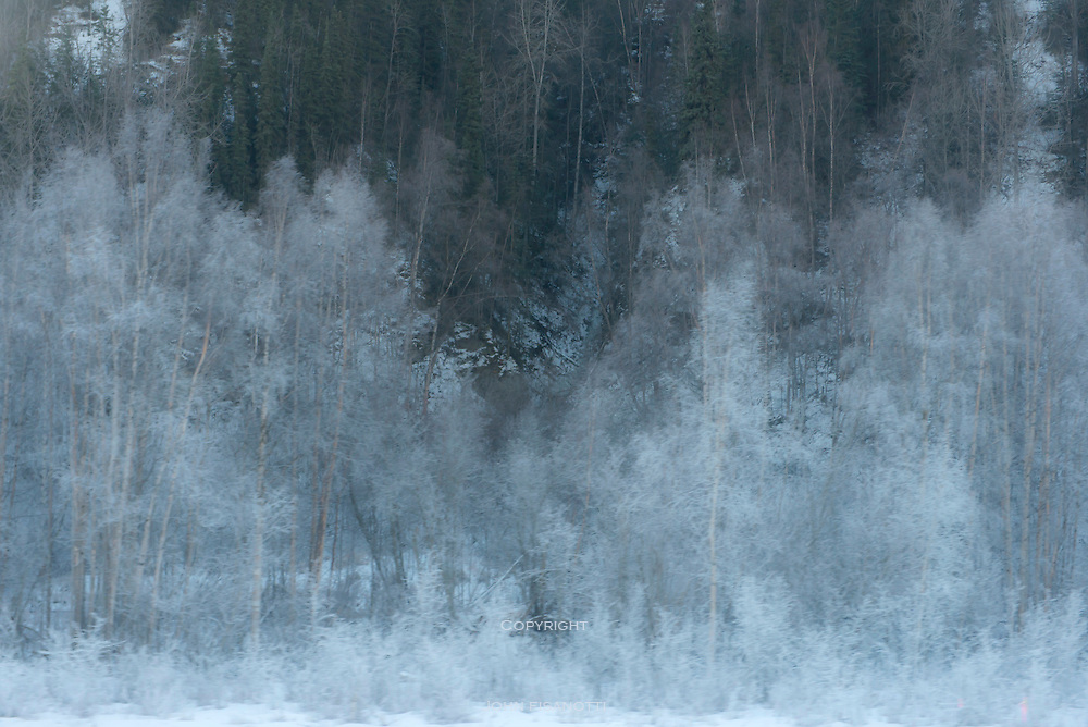 Hoarfrost on willows, view from the Glenn Highway
