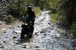 Danger Dan Hardick riding his 2-week old Harley-Davidson Pan-America adventure bike up a very wet trail just outside Red River, NM, USA. Sunday, May 30, 2021. Photography ©2021 Michael Lichter.