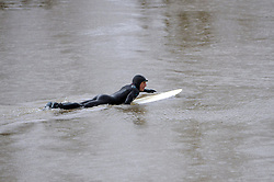 © Licensed to London News Pictures. 03/03/2014; Minsterworth, Gloucestershire, UK.  Surfers ride the Severn Bore. Today was a 5 star bore because of a high spring tide.<br /> Photo credit: Simon Chapman/LNP