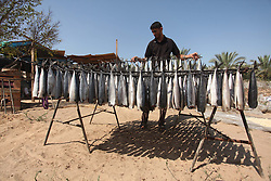 16.07.2015, Gaza city, PSE, Geräucherter Hering, im Bild ein Palästinenser bei der Herstllung von Geräucherten Hering Fisch // A Palestinian man display the Smoked Herring or, salted fish, on sunlight to be sold in a market for the Eid al-Fitr, a three-day holiday that marks the end of the fasting month of Ramadan as Muslims the world over prepare to celebrate Eid al-Fitr, starting with the with the sighting of the new moon, to mark the end of the fasting month of Ramadan, Palestine on 2015/07/16. EXPA Pictures © 2015, PhotoCredit: EXPA/ APAimages/ Ashraf Amra<br /> <br /> *****ATTENTION - for AUT, GER, SUI, ITA, POL, CRO, SRB only*****