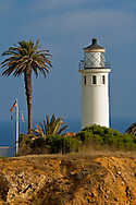 Point Vicente Lighthouse and palm tree, Point Vicente, Palos Verdes Peninsula, California