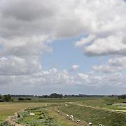 Nederland Ossenisse  gemeente Hulst  19 juni 2010 20100619       ..Serie landschappen provincie Zeeland. Zeeuws-Vlaanderen, polderlandschap   scenery. Koeien lopen langs binnendijkse dijk., skies, space, sprankelend, sprankelende, stijging zeespiegel, stil, stilleven, stilte, stock, stockbeeld, streek, sustainable, terrein, typerend, typical dutch landscape, typisch hollands, typisch hollands landschap, typische, uitgestrektheid, uitzicht, uniek, unieke, vee, veiligheid, veld, vergezicht, vergezichten, verte, vrij, vrijheid weer, water level, waterbeheer, Waterbeheerplan, waterhuishouding, waterkering, Waterkeringen, waterkeringen, waterlevel, watermanagement, waterniveau, waterpeil, waterplan, waterproblematiek, waterstaatkundige, waterstand, watersysteem, waterveiligheid, waterveiligheid en gebiedsontwikkeling, waterwerken, weersomstandigheden, wei, weide, weidegang, weiland, weiland. Landscape, wijdheid, wijds, wijdsheid, wit, witte, wolk, wolken, wolkenpartij, zeeland, zeeuws vlaanderen, zeeuws-vlaanderen, zeewering, zo vrij als een vogel, zwitserleven gevoel  ..Foto: David Rozing