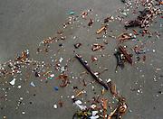 Plastic flotsam in shoreline wave wash, Washington Islands Wilderness, North Olympic Coast, Olympic National Park, Washington.