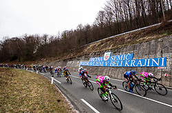 Peloton at Semic in Bela Krajina during cycling race 6th Grand Prix Adria Mobil 2021, on March 28, 2021, in Novo mesto, Slovenia. Photo by Vid Ponikvar / Sportida