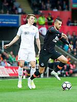Football - 2016 / 2017 Premier League - Swansea City vs. Everton<br /> <br /> Kevin Mirallas attacks, at Liberty Stadium.<br /> <br /> COLORSPORT/WINSTON BYNORTH
