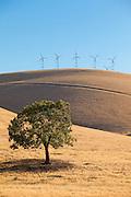Northern California Turbines