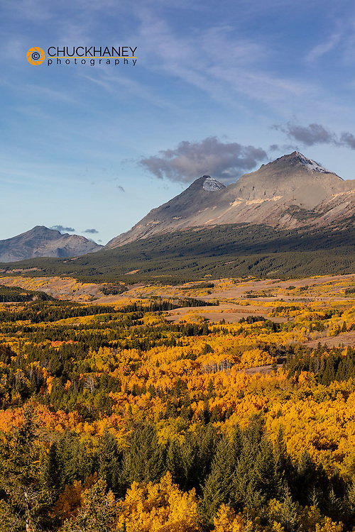 Peak fall color at Marias Pass in Glacier National Park, Montana, USA