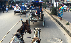 July 30, 2017 - Dhaka, Bangladesh - July 30, 2017- Old Dhaka, Bangladesh – Old Dhaka city People rides on the horse cart to go their daily work in Old Dhaka city on 30 June 2017. Horse carts were first opened in Kolkata and was driven to Old Dhaka from there. During the 19th century. Horse-drawn carriages are a popular means of transport in Dhaka, especially in the old part of the city. People still run back to horse carriages, to ensure the new generation is acknowledged the Old Dhaka culture. © Monirul Alam (Credit Image: © Monirul Alam via ZUMA Wire)