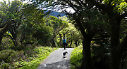 Mindfullness in Killarney National Park in Killarney Ireland.<br /> #lakesofkillarney<br /> Photo Don MacMonagle