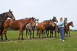 Fokkerij Ludo Philippaerts<br /> Bocholt 2011<br /> © Dirk Caremans