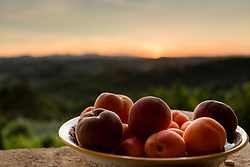 A Bowl of Peaches and Apricots with Sunset View