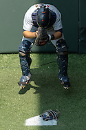 Alex Avila (13) of the Detroit Tigers prepares before a game against the Minnesota Twins on August 15, 2012 at Target Field in Minneapolis, Minnesota.  The Tigers defeated the Twins 5 to 1.  Photo: Ben Krause
