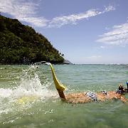 KAUAI, HI, July 12, 2007: A snorkeler swims the water at Ke'e Beach on the North Shore of Kauai.(Photograph by Todd Bigelow/Aurora)