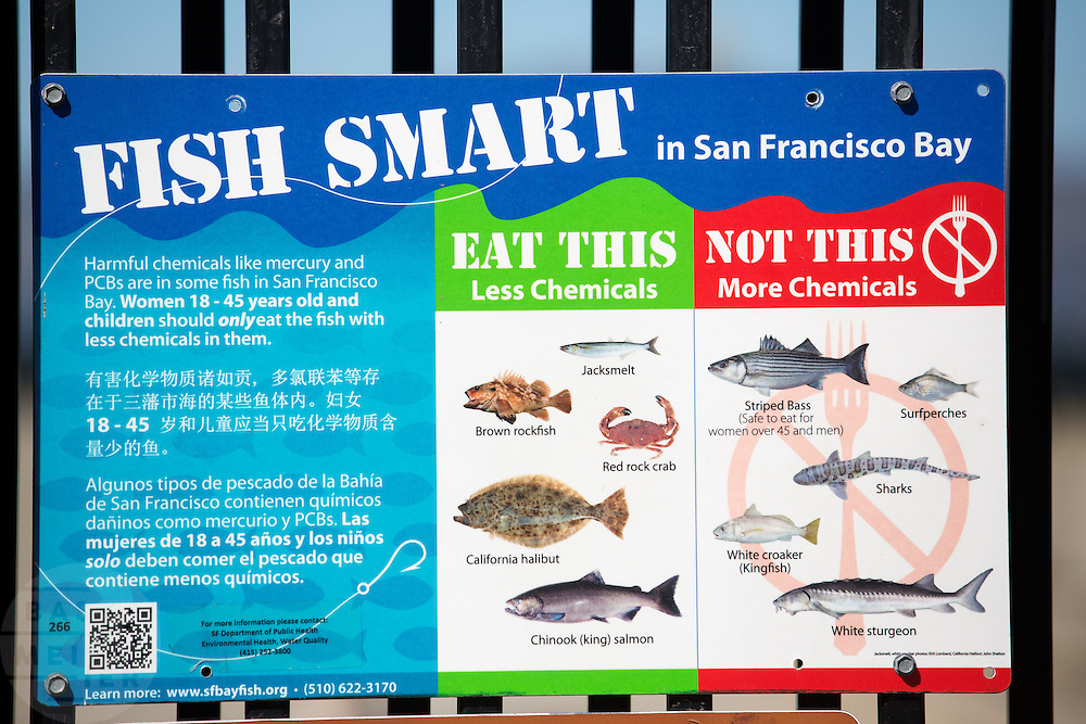 Een bord geeft aan welke vissen die je kunt vangen in de Baai van San Francisco eetbaar zijn en welke zijn vergiftigd door chemicaliën als kwik en PCB's. <br /> <br /> A sign indicates which fish you can catch in the San Francisco Bay are edible and which are poisoned by chemicals like mercury and PCBs.