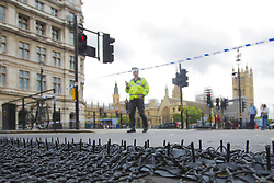 September 10, 2017 - London, London, UK - London, UK.  Hostile Vehicle Mitigation Equipment, referred to internally by the Met Police as Talon, in use for the first time in Whitehall this morning (Sunday). The wide mats contain a double row of barbed spikes that disable any vehicle driving over them by wrapping the netting around the front wheels. This differs from stingers or stop sticks which merely deflate the tyres allowing the vehicle to continue. (Credit Image: © Cliff Hide/London News Pictures via ZUMA Wire)