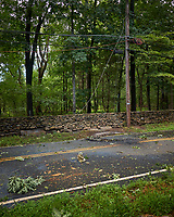Front yard after Tropical Storm Isaias. Downed power lines crossing burned section of Grandview Road. Image taken with a Leica CL camera and 18 mm f/2.8 lens
