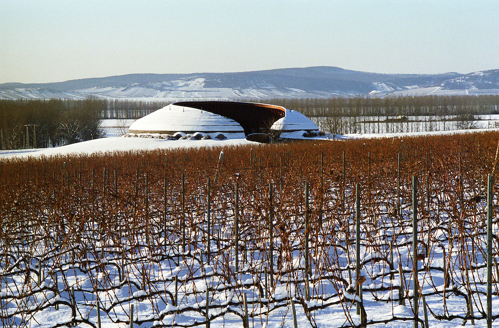 The Disznoko vineyard and famous tractor garage, designed in the Hungarian organic style. In winter.. The Disznók? winery is owned by AXA Millesimes, a French insurance company. Disznoko means pig's head since a big rock in the vineyard supposedly looks like that. The new winery is impressive and a vast amount of money has been invested. Credit Per Karlsson BKWine.com