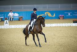 Carvalho Goncalo (POR) - Rubi <br /> CHI Al Shaqab - Doha 2013<br /> © Dirk Caremans
