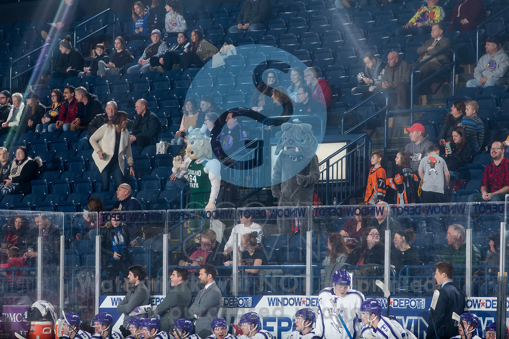 Youngstown Phantoms lose 4-1 to the Tri-City Storm at the Covelli Centre on January 17, 2020.