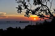 Frangipani tree silhouetted against sunset over Bai Dau beach, Vung Tau, Vietnam